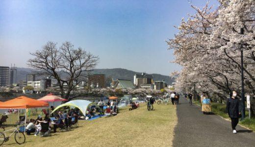 広島市のお花見・バーベキューおすすめスポット「中央公園・本川河川敷」