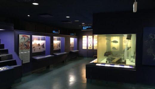 【広島 おでかけ】広島市水産振興センター|広島の海を知れる穴場スポット