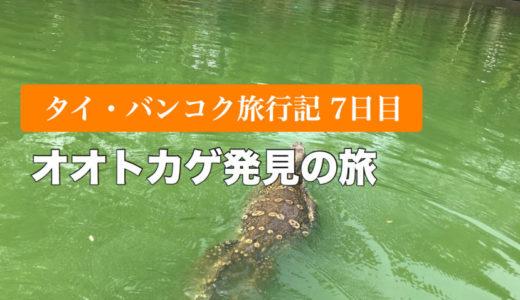 【タイ・バンコク子連れ旅行記7日目】ルンピニー公園、オオトカゲを発見!