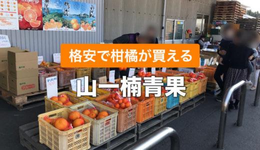 【山一楠青果】瀬戸内の柑橘類を安く購入できる隠れた人気店