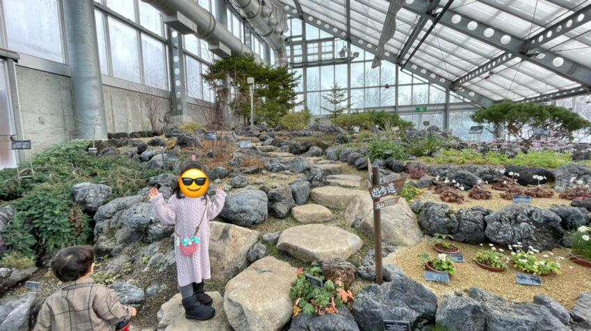 高山・絶滅危惧植物室