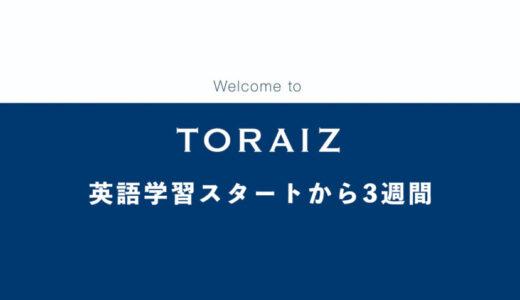 【コーチング英会話】トライズ(TORAIZ)で英語力アップを目指す【2,3週目】