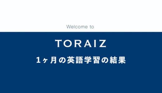 【コーチング英会話】トライズ(TORAIZ)で英語力アップを目指した結果